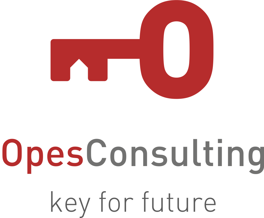 Opes Consulting
